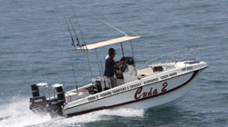 Cuda 2, Hermanus Fishing Charters