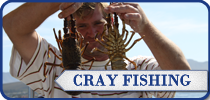 Cuda 2, South Africa Fishing Charters, Hermanus Crayfish